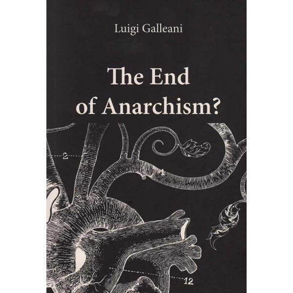 end-of-anarchism-by-galliani